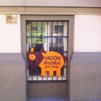 Photo taken at Vadon díszállat-kereskedés és kutyakozmetika by Kristóf K. on 3/22/2012