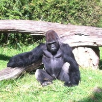 Photo taken at Zoo Berlin by Christian H. on 8/25/2012