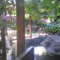 8/5/2012 tarihinde Selcuk C.ziyaretçi tarafından Andız Köy Sofrası'de çekilen fotoğraf