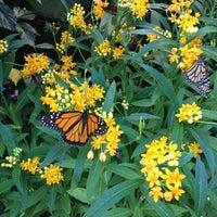 Das Foto wurde bei Wilhelma von Rebecca W. am 8/19/2012 aufgenommen
