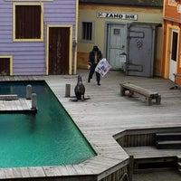 Photo taken at Dolfinarium by R. Mathieu L. on 6/22/2012