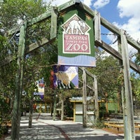 Photo taken at Tampa's Lowry Park Zoo by Meaghan B. on 3/8/2012