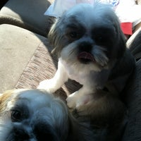 Photo taken at Nana's Pet Grooming by Charlie H. on 5/21/2012