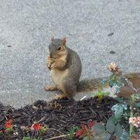 Photo taken at University Park by Heather on 6/20/2012