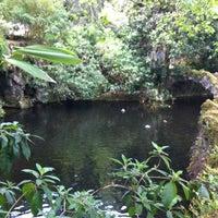 Foto tomada en Quinta da Regaleira por Alfredo F. el 4/24/2012
