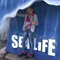 Photo taken at SEA LIFE Aquarium by Stacey S. on 4/11/2012