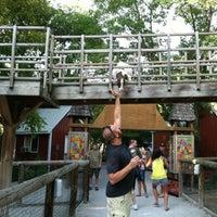 Photo taken at Zoo Brew by Drew V. on 7/19/2012