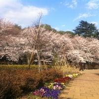 Photo taken at Tetsugakudo Park by Big_Pillow C. on 4/6/2012