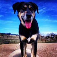 Photo taken at Horsetooth Dog Park by Stacy C. on 3/28/2012