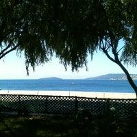 6/21/2012 tarihinde Tuğçe A.ziyaretçi tarafından Palmiye Cafe'de çekilen fotoğraf