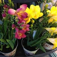 Photo taken at Trader Joe's by Elizabeth B. on 4/22/2012