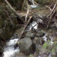 Foto tomada en Parque Nacional Los Alerces por Cristian E. el 7/27/2012