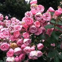 Das Foto wurde bei Rosengarten von slys am 8/7/2012 aufgenommen