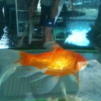 Photo taken at Pasar Sarijadi by Freedoo G. on 4/29/2012