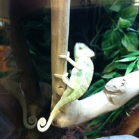 Photo taken at PetSmart by Doug B. on 8/25/2012