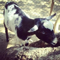 Photo taken at Orange County Zoo by Tracy N. on 9/9/2012