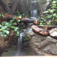 Photo taken at The Rainforest by Brian O. on 4/21/2012