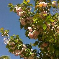 Foto scattata a Parc Joan Reventós da Nevermore il 4/24/2012