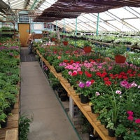 Photo taken at Woolfs Greenhouse by Patrick S. on 5/30/2012