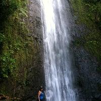 Photo taken at Mānoa Falls by Tracy N. on 2/24/2012