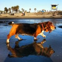 Photo taken at Ocean Beach Dog Beach by david b. on 7/2/2012