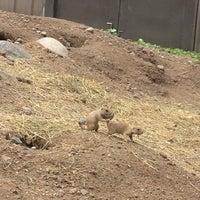 Photo taken at Prairie Dog Park by MARiA on 6/15/2012