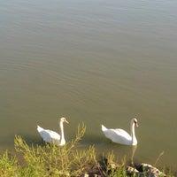 Photo taken at Čarda Florida by Katarina M. on 9/9/2012