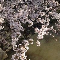 4/12/2012にHisatake K.が日牟禮ヴィレッジ たねやで撮った写真