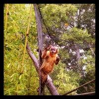 Photo taken at Monkey Trail by Bort R. on 5/2/2012