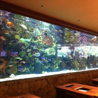 Photo taken at The Mirage Aquarium by Adam on 7/14/2012