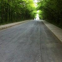 Das Foto wurde bei İTÜ Ağaçlı Yol von Özgün E. am 5/10/2012 aufgenommen
