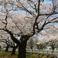 Photo taken at 富岡総合公園 by Ryoma S. on 4/9/2012