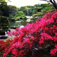 Снимок сделан в Rikugien Gardens пользователем katz 4/30/2012
