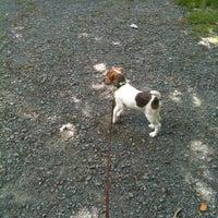 Photo taken at Hemlock Ravine by Morgan L. on 7/4/2012