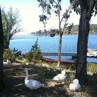 Photo taken at Lake Miramar Reservoir by Jewell A. on 5/21/2012
