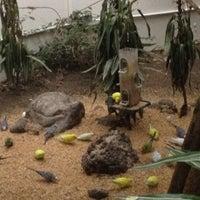 Photo taken at Sanborns by Paola B. on 7/11/2012