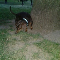 Photo taken at Waggin Tails Dog Park by Laci Y. on 5/28/2012