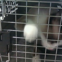 Photo taken at VCA Southwest Freeway Animal Hospital by David H. on 4/2/2012