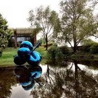 8/21/2012にWernerがFondation Beyelerで撮った写真