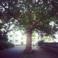 Foto scattata a Thomashöhe da Olga il 8/26/2012