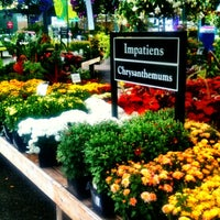 Photo taken at Swansons Nursery by Robby D. on 8/23/2012