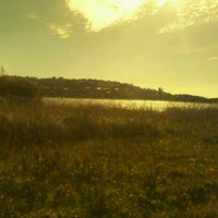 Photo taken at Dee Why Lagoon by Bruna B. on 7/24/2012
