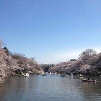 Foto scattata a Inokashira Park da Daisuke I. il 4/6/2012