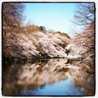 Foto scattata a Inokashira Park da chuoushibafu il 4/6/2012
