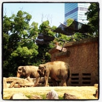 Photo taken at Tennoji Zoo by Mitani S. on 7/28/2012