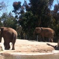 4/16/2012 tarihinde Bethany C.ziyaretçi tarafından Elephant Odyssey'de çekilen fotoğraf