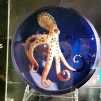 Photo taken at Corning Museum of Glass by Blu on 8/13/2012