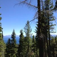 Снимок сделан в Tahoe Rim Trail / Brockway Summit пользователем Jason V. 6/9/2012