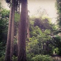 Das Foto wurde bei Llandover Woods von James W. am 8/7/2012 aufgenommen