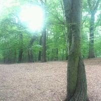 7/7/2012 tarihinde Christian M.ziyaretçi tarafından Volkspark Schönholzer Heide'de çekilen fotoğraf